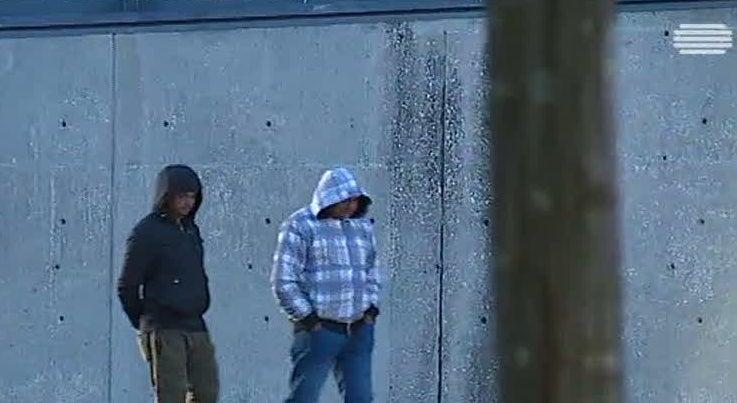 País - Temperaturas baixas vão sentir-se com intensidade no interior de Portugal