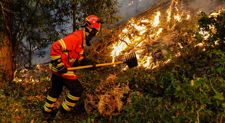 Incêndios: Três fogos em curso e dois em resolução mobilizam 1.434 operacionais