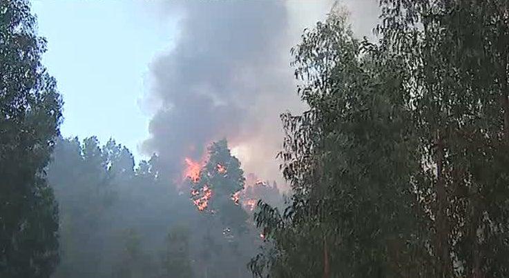 Este ano houve 15.500 inc�ndios em Portugal, mais do dobro do que em 2014