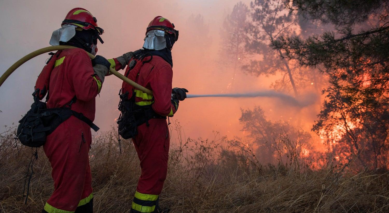 Fogo no Fundão obriga ao corte da linha da Beira Baixa — Incêndios