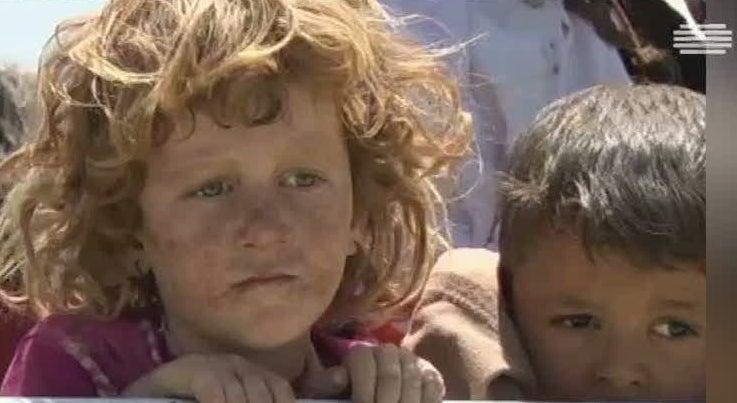 Pol�tica - Governo quer acolher 470 refugiados Yazidi