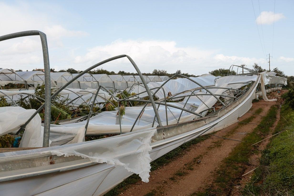 Governo promete apoio a agricultores afetados pelo tornado do Algarve