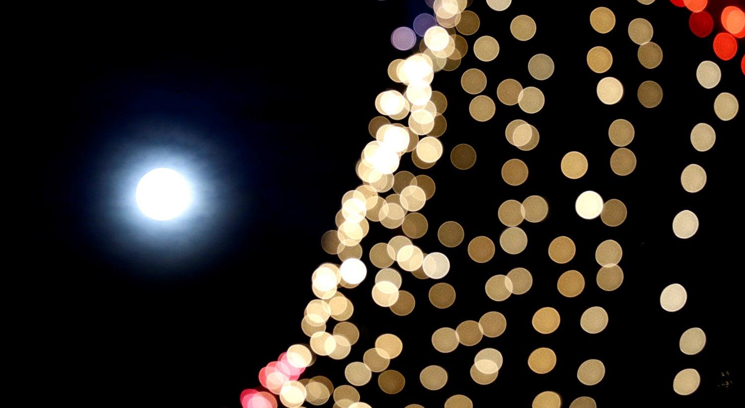 Natal em Gaia iluminado por 650 mil lâmpadas LED