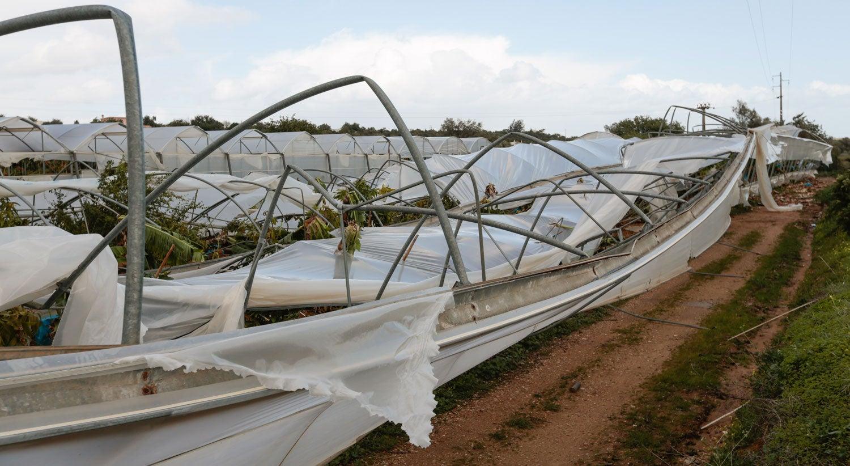 Luís Medeiros Vieira anuncia apoios para os agricultores algarvios afectados pelo temporal