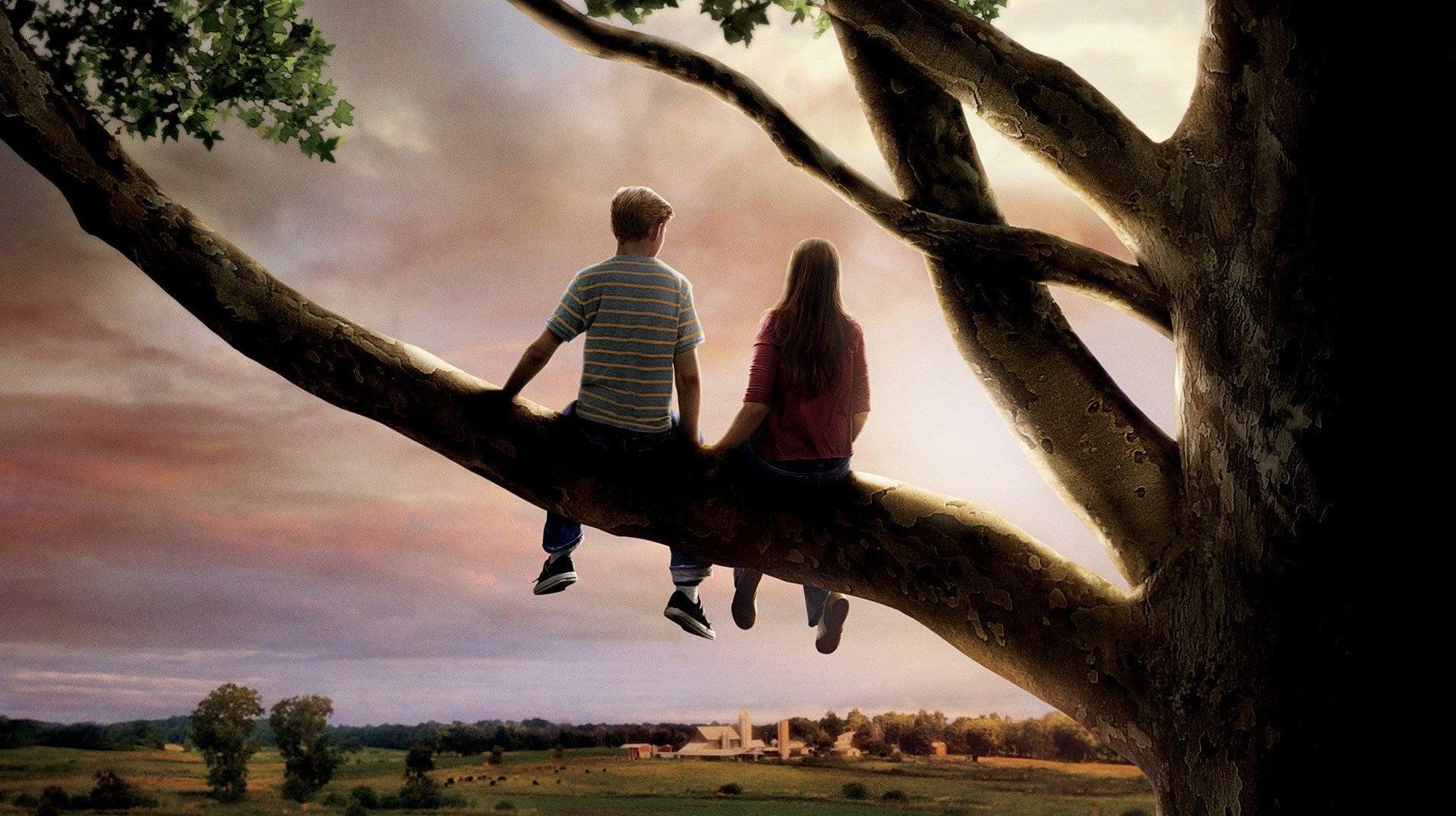 A Descoberta do Primeiro Amor