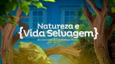 Play - Natureza e Vida Selvagem