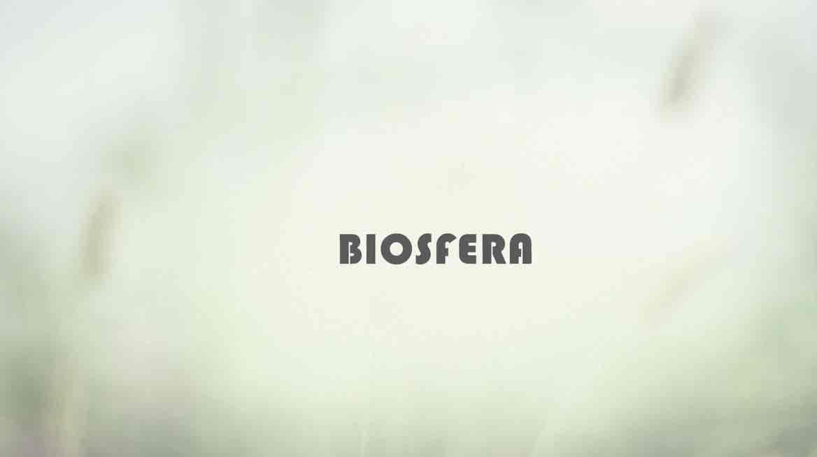 Biosfera - Temporada XVI