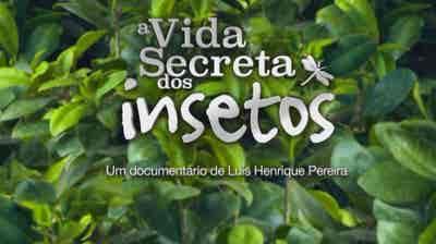 Play - A Vida Secreta dos Insetos