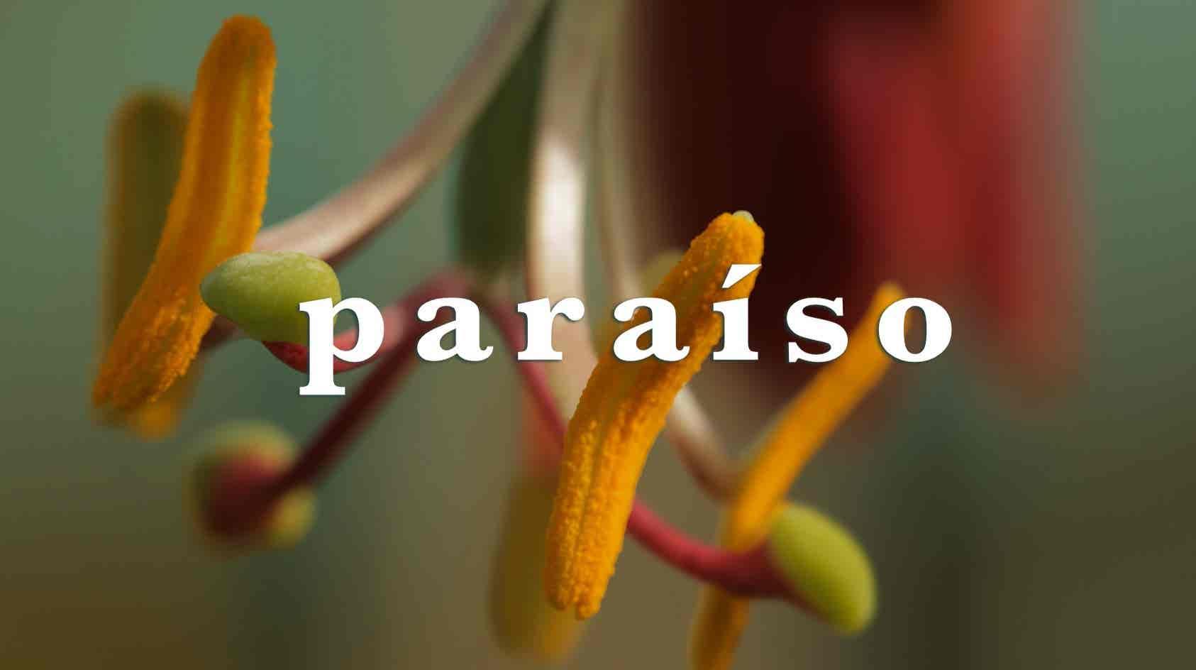 Play - Paraíso
