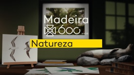 Madeira 600 Anos, Natureza