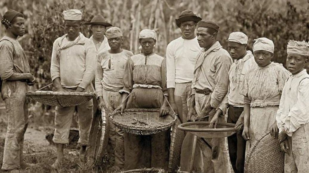 1620-1789: Do Açúcar à Revolta