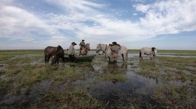 Play - Rio Paraná: Um Rio Quase Mar