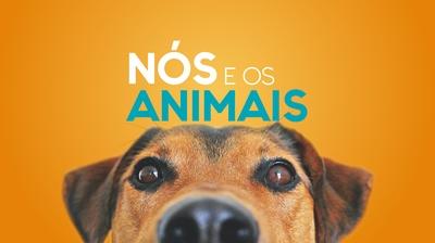 Play - Nós e os Animais