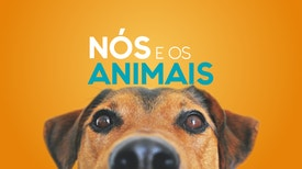 Nós e os Animais