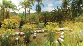 Jardins de Arte - Jardim de Cactos de Lanzarote (Espanha)