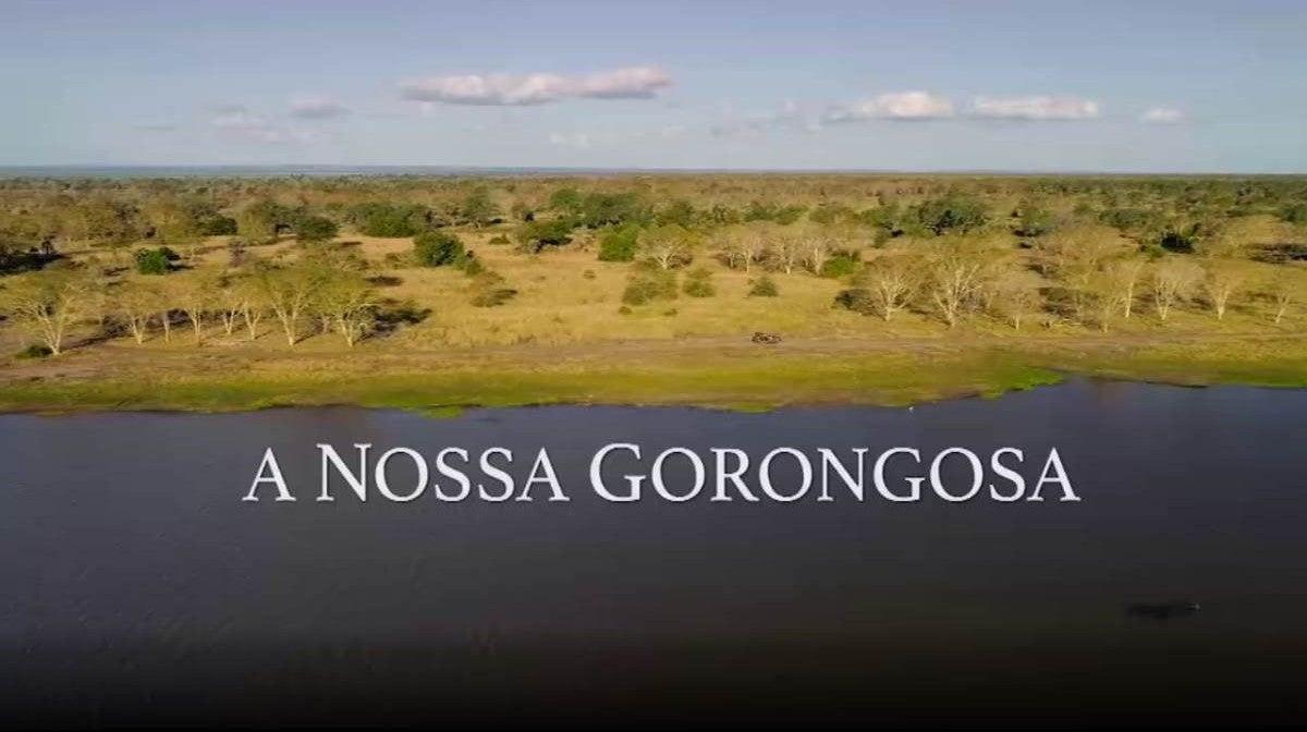 A Nossa Gorongosa