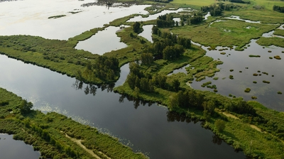 Play - O Delta do Óder: Uma Selva Sem Fronteiras