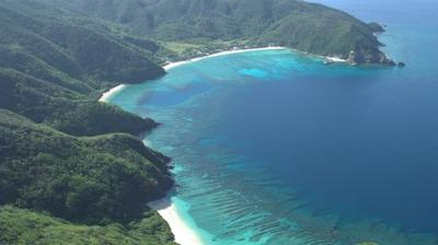Play - Mar de Amami: Recifes de Coral Milagrosos