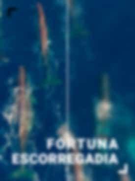 Fortuna Escorregadia