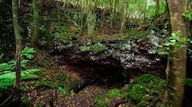 Geoparque Açores em 5 minutos - Rota dos Geossítios - Caldeirão