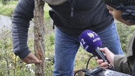 Reportagem Antena 2 - A Última Bilha de Gás - Retratos da Cultura em Sobrevivência, sobre os efeitos da pandemia da Covid-19 no mundo da cultura (reportagem de Isabel Meira)