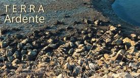 Terra Ardente - ATNatureza - Associação Transumância e Natureza. Entrevista a Marco Ferraz, membro da Direcção da Associação