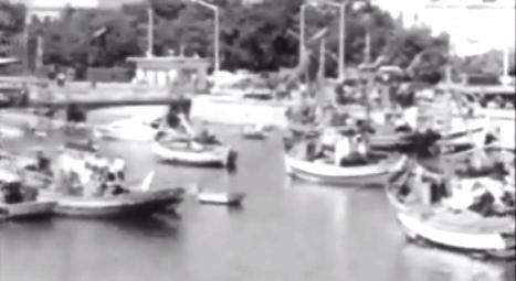 Escassez de peixe devido à poluição marítima