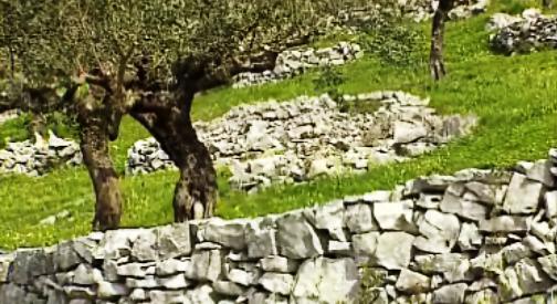 Ourém: Em Pedra Talhada