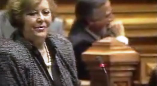 Parlamento debate condição da mulher