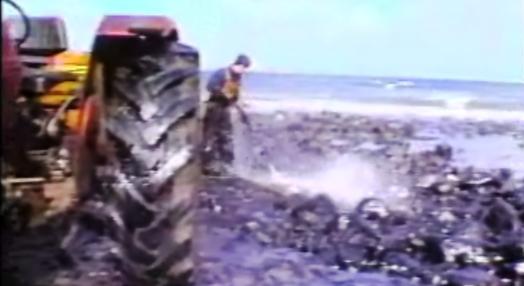 Mancha de Crude em Porto Santo