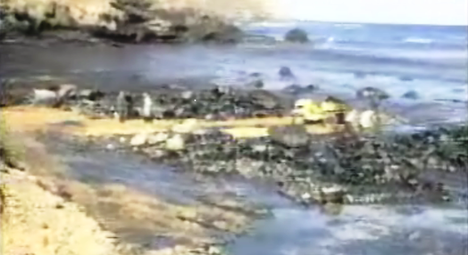 Derramamento de Crude em Porto Santo