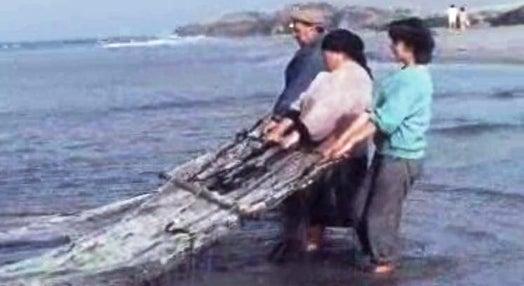 Pescadores da Póvoa de Varzim