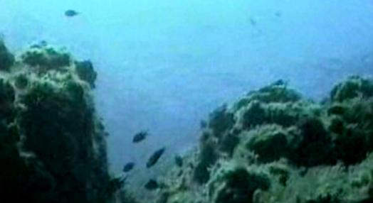 Ilhas Submersas