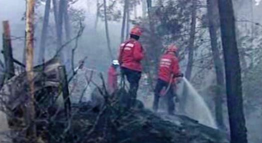 Incêndio florestal em Vila Real