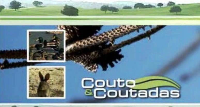 Couto & Coutadas