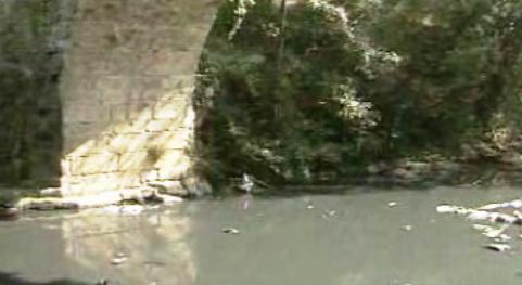 Poluição do rio Leça