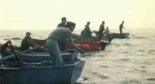 Pescadores da Berlenga