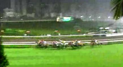 Concurso para apostas em corridas de cavalos