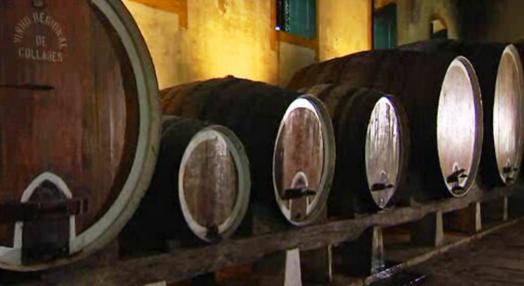 O Vinho Também Tem História
