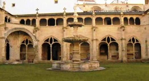 Onde nasceu D. Afonso Henriques?