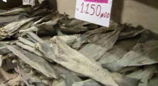 Conflito na pesca do bacalhau