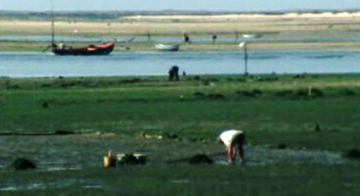 De Algarve e Sol, Pão Duro e Pão Mole
