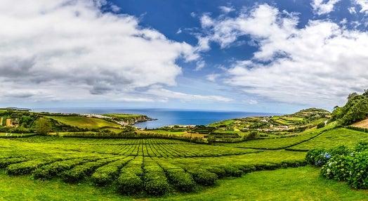 Açores Hoje