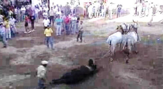 Corrida de touros em Barrancos