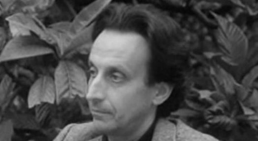 Perfil: Fernando Guimarães