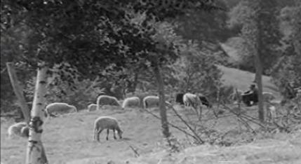 O Povo Faz o que Precisa: Trás-os-Montes, Terras do Barroso – Parte I