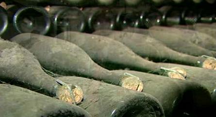 Região da Bairrada e Champagne