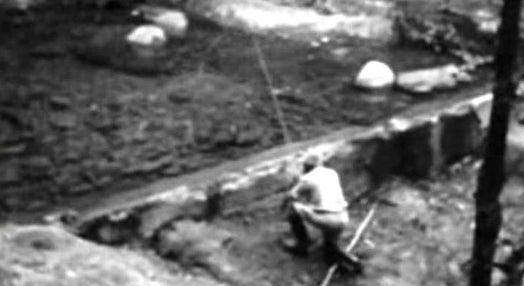 Pesca à Pluma