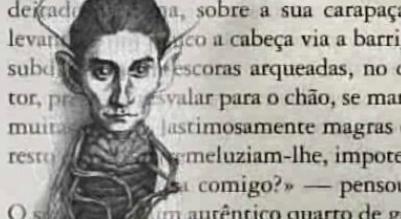 Metamorfose – O Livro de Valter Hugo Mãe