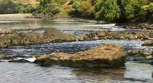 Tejo: O Rio Perdido